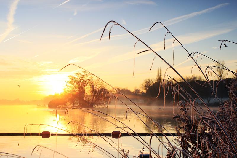 Golden sunrise Danson Park