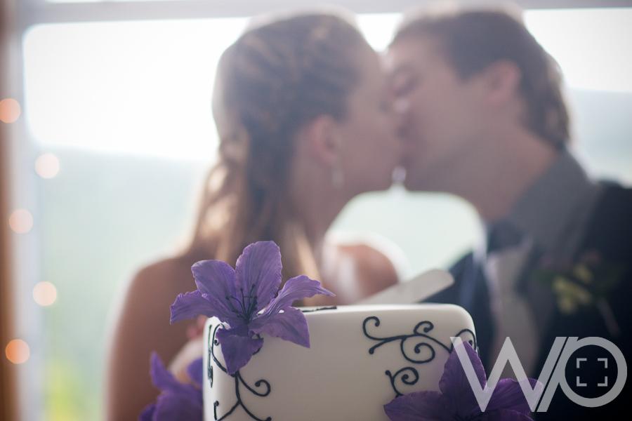 Auckland Wedding Photographers - Cake Cutting