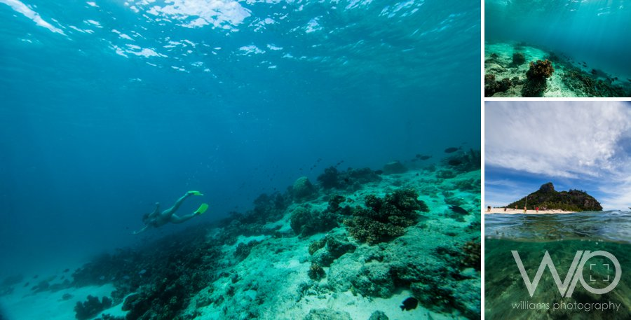 Monuriki Underwater Photography