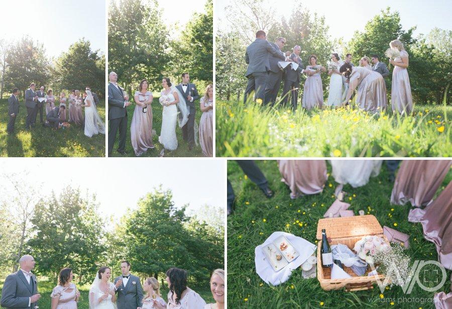 Picnic Wedding Photos