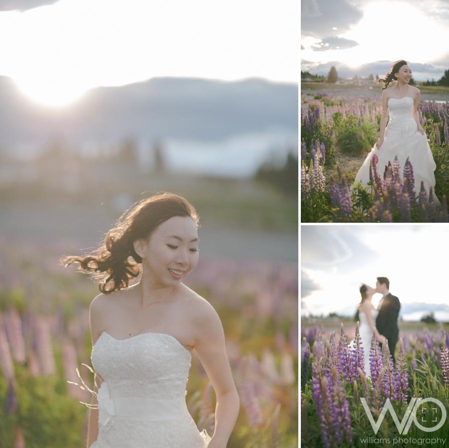 Tekapo Lupins Wedding Photography