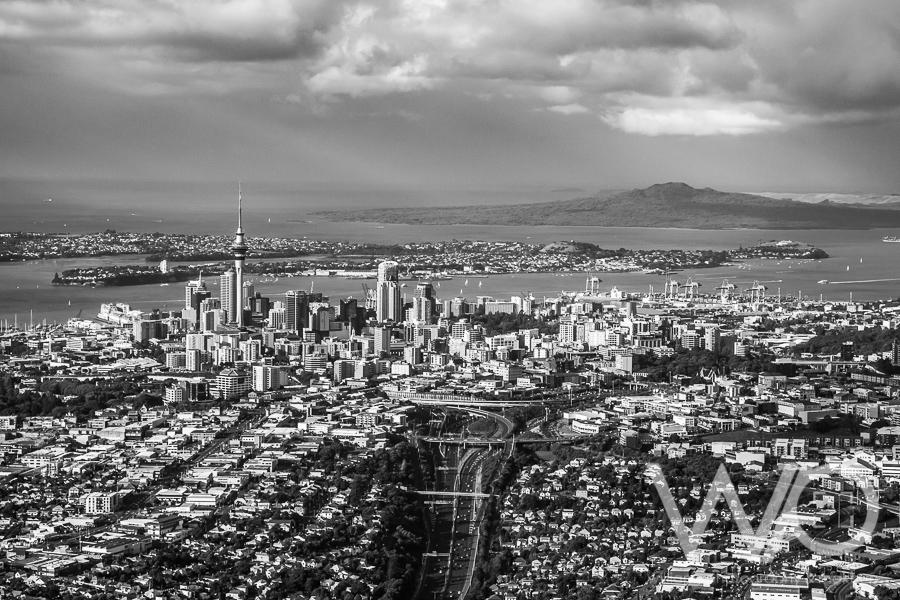 Auckland City black & white