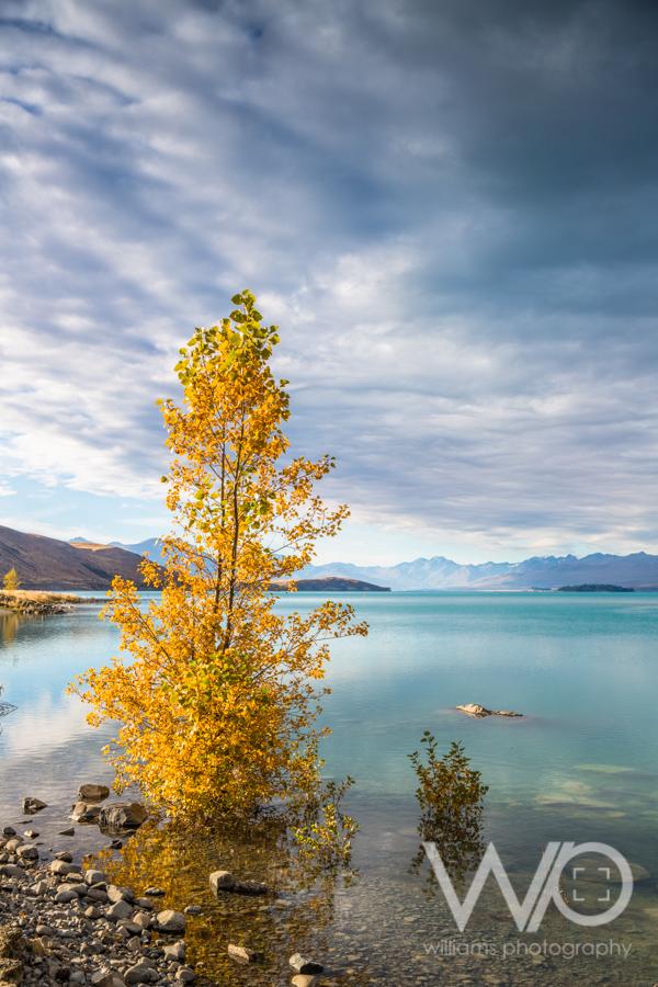 Lake Tekapo Photos